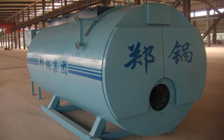 Oil fired steam boiler image